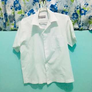 School Polo Shirt teens (male)