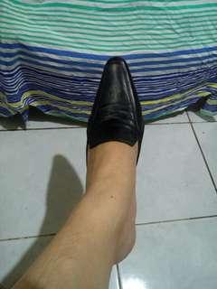 Shoes/ Mules
