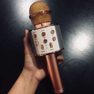 Microphone w/speaker