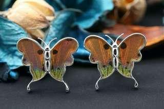 Navia Jewelry Real Butterfly Wing Urania ripheus Alloy Cufflinks Korea