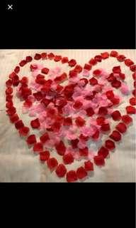 Silk Rose Flower Petals! 100 Pieces!