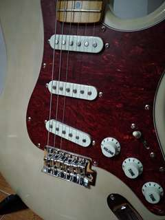 (price reduxed)Alex's Stratocaster