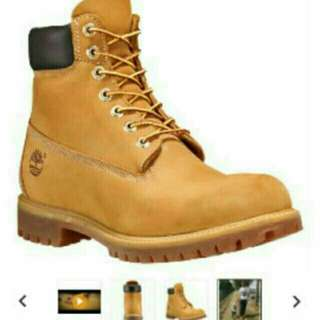 Timberlands Womens size 7
