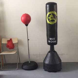 Standing Punching Bag or Gloves