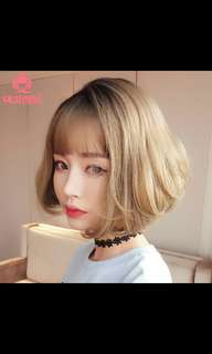 Preorder korean short bobo ladies wig * waiting time 15 days after payment is made*chat to buy to order