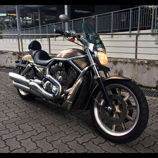 2025 Harley Davidson V-Rod (VRSCA)