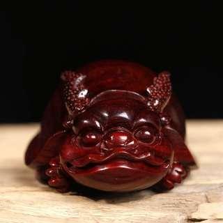 印度小葉紫檀萌龍龜