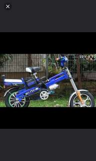 Electric Bike SUV-8 V2