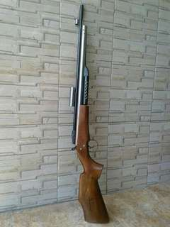 Senapan angin AGS AIR RIFLE