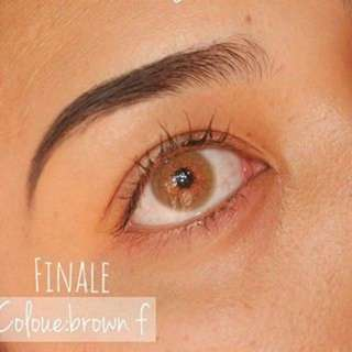 Finale - Brown Contact Lens