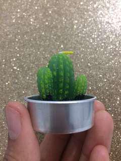 Cactus tea light candles
