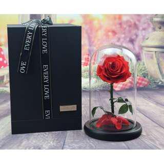 2019 Extra Large Finest Premium Glass Real Flower Display Bell Jar Dome Immortal Preservation Preserved Love shape Glass Jar Rose Colour