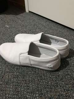 Lacoste size: USA10