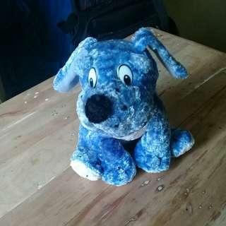 Blue/white dog