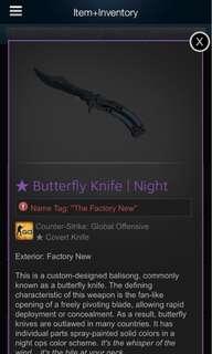 CSGO KNIFE Butterfly Night FN