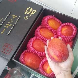台灣直送屏東愛文芒果(包冷凍送貨)