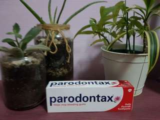 Parodontax Daily Fluoride Toothpaste