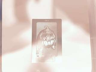 1980s 龍珠 金屬卡