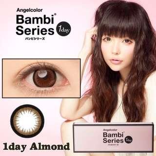 Angelcolour Bambi Series 1 day lenses -6.5 (Almond) x30lenses