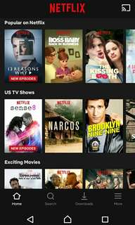 Netflix 1 month Premium (ultra HD + 4 screens)