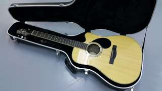 Acoustic Guitar (Greg Bennett)