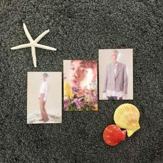 EXO CBX Official Blooming Days Postcards