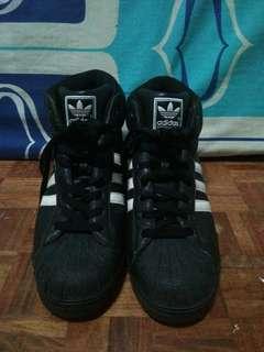 Adidas // Superstar Highcut