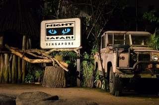Night Safari Night Safari