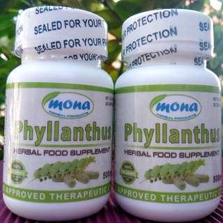 Kidney Care Mona Phyllantus Chanca Piedra for Kidney Stone Crusher