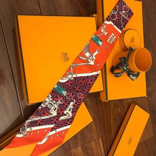Brand New Hermes Twilly