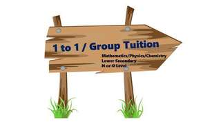 1 to 1 / Group Tuition