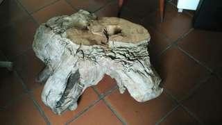 Natural wood stump
