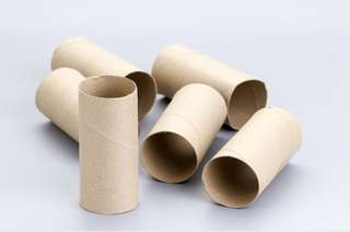 20 x empty toilet paper rolls for hand craft