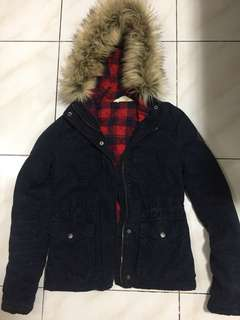 Hollister winter jacket winter coat with hood and removable fur