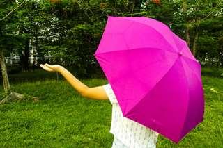 Magenta Umbrella (Plain)