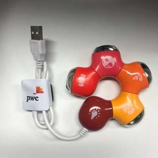 PwC USB Hub