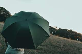 Battle Green Umbrella (Plain)
