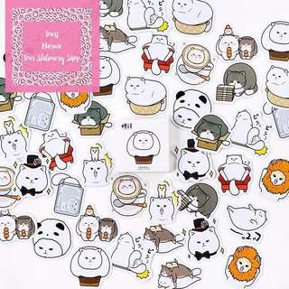 45pcs The Diary of Chubby & Furry White Cat Sticker Pack