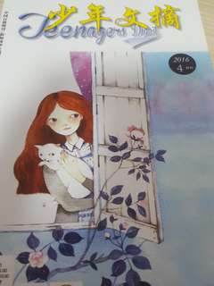 Chinese Storybook - Teenagers Digest Vol 4