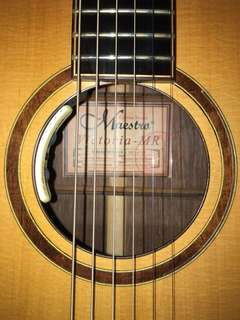 Maestro Acoustic Guitar custom series Victoria MR