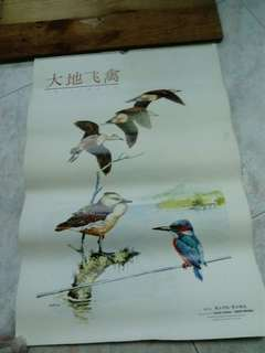Vintage calendar collectible-1988 Lianhe Zaobao Bird Series