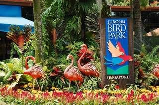 Jurong Bird Park Weekend Promo