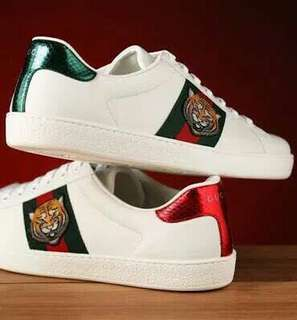 Sepatu Gucci Pria
