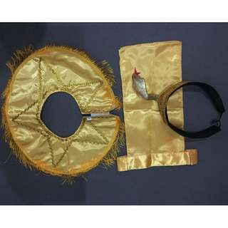 Costume - Egyptian for 3-6 y.o.