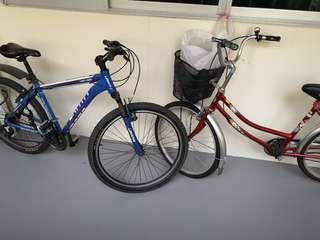 Urata bicycle - mtb and ladies