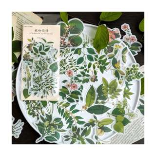 60pcs Green Leaves Stickers
