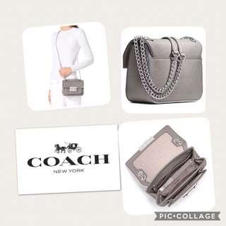 Coach Grey & Silver Saffiano Small Purse