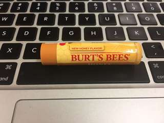 Burt's Bees lip balm new!