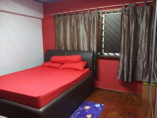 HDB TAMPINES ST 81 ROOM FOR RENT (opposite Temasek Poly)