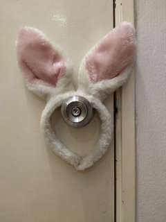 Rabbit hairband